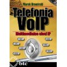 VoIP telephony. Multimedia IP networks