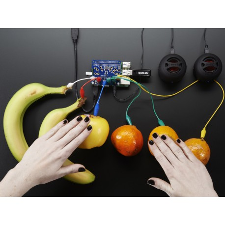 Adafruit Capacitive Touch HAT for Raspberry Pi - Mini Kit - MPR121