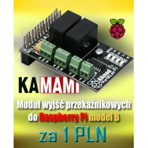 Zestaw RPI_PROMO6B