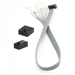 The cable for the ATMEL ICE programmer in the set with 10-pin and 6-pin connectors