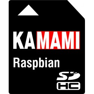 Raspberry Pi RPI RASPBIAN SDHC 8 GB (class 4)