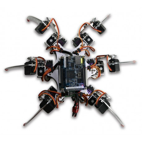 Terasic Spider - a set with a rolling robot