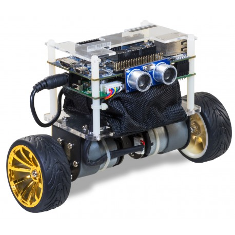 A set with a Terasic balancing robot