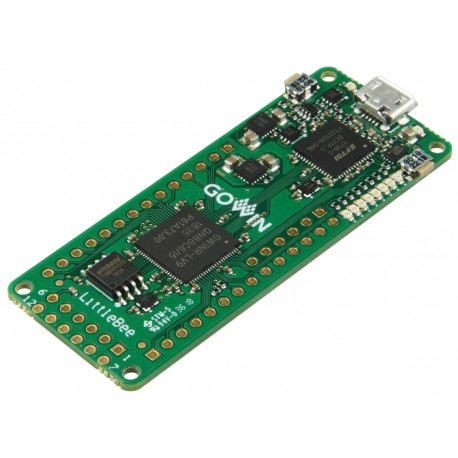 Evaluation kit with GOWIN LittleBee FPGA and 8MB SDRAM