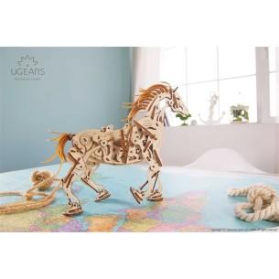 Zestaw RPI_PROMO21
