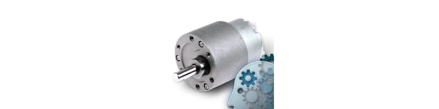 DC motors with gear