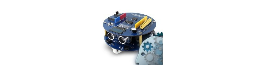 Robots with Arduino